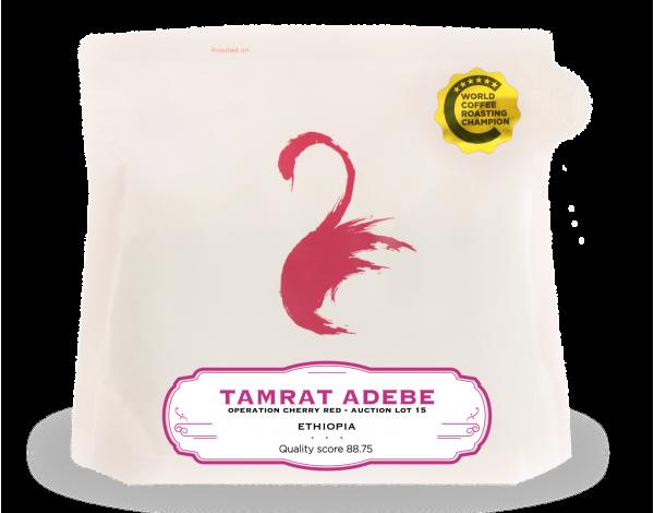 Tamrat Adebe (front)