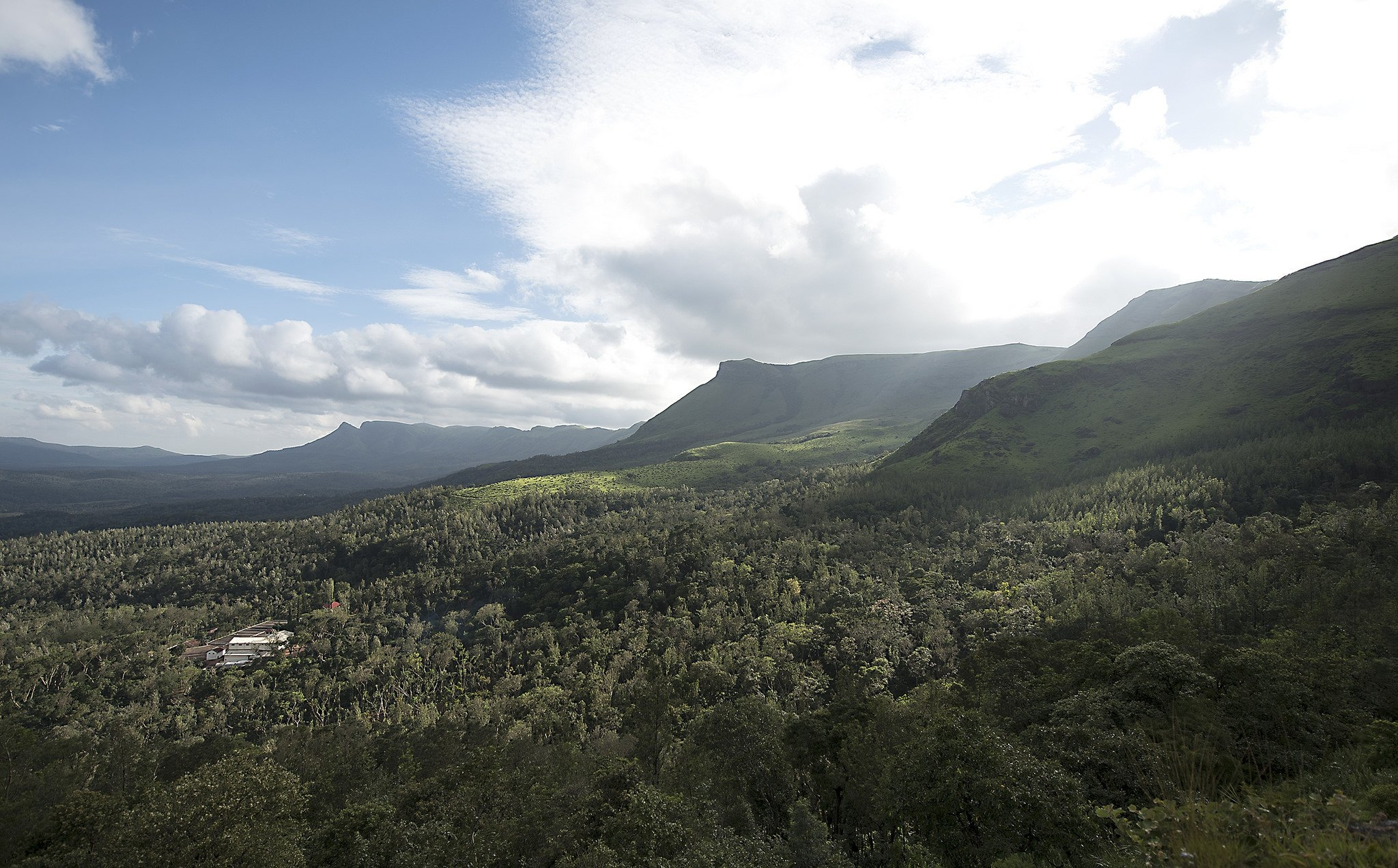 Bynekere Estate (story)