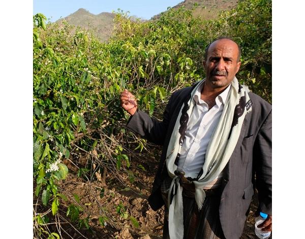 Al Mekhlafi (product)