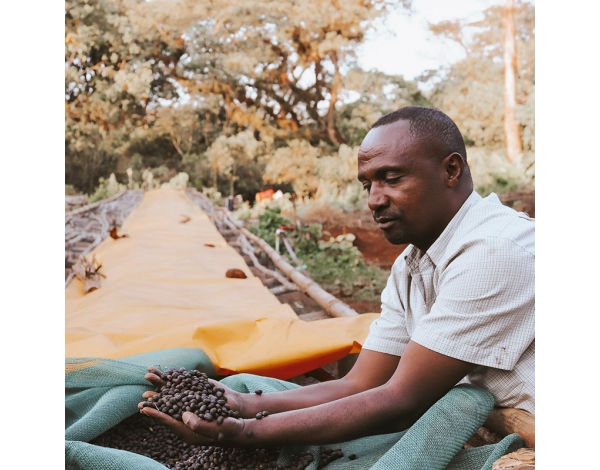 Mustefa Abakeno (story)