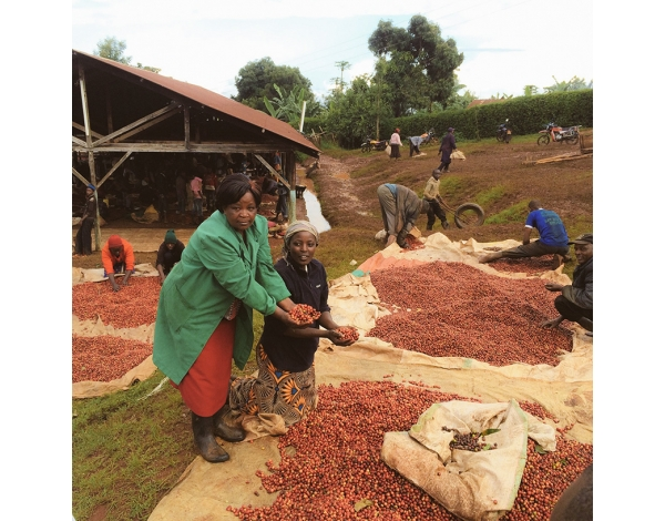 Muchagara AB - Kenya (story)