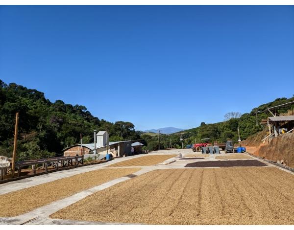 Sitio Da Torre - Brazil (fermentation)