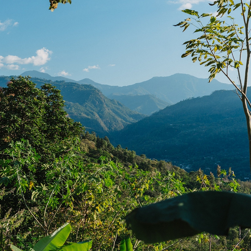 Yalan Huihuit'z  - Guatemala (story)