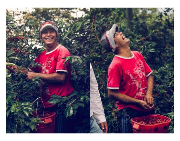 La Pradera - Colombia (product)
