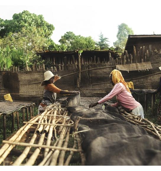 Halo Beriti - Ethiopia (story)