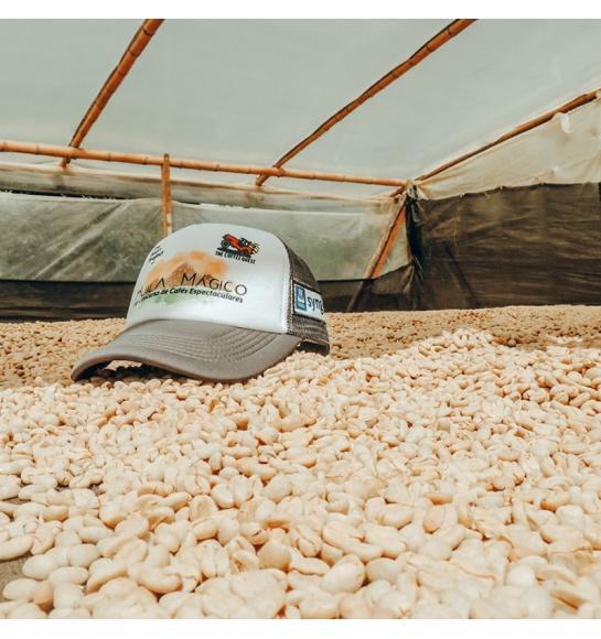 El Mirador Terra Nova - Colombia (fermentation)