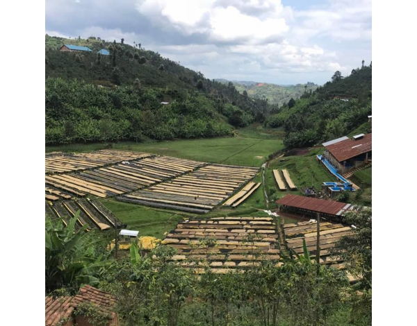 Gatare - Rwanda (fermentation)