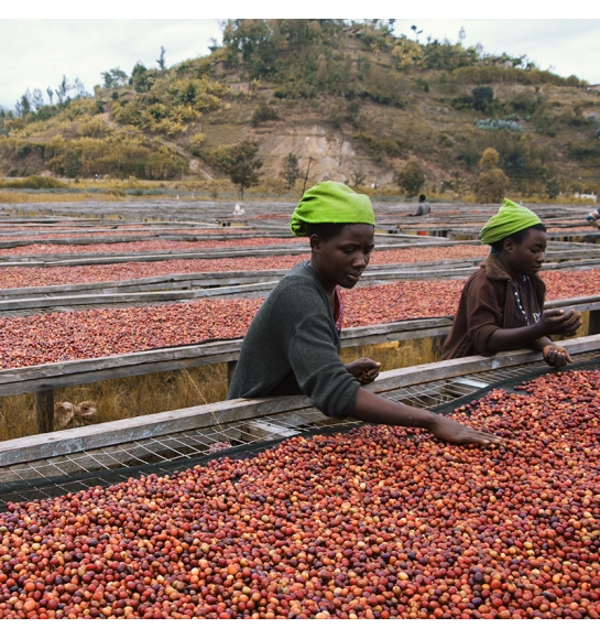 Gatare - Rwanda (product)