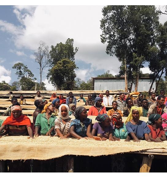 Gora Kone (Ethiopia) - story