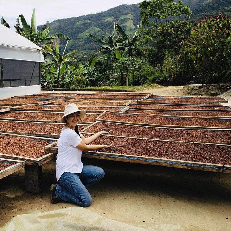 Yambamine Sidra (Ecuador) - story