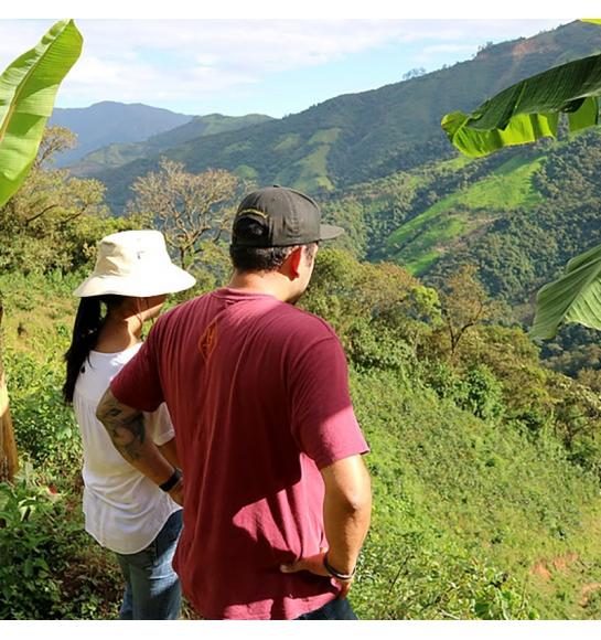 La Chorora (Ecuador) - product