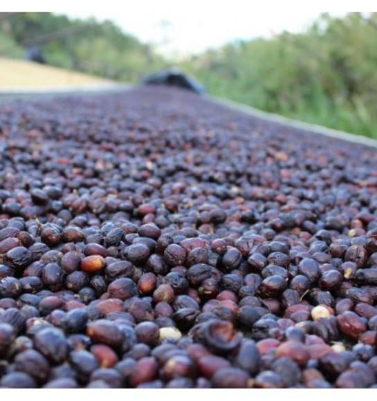 Natural dry (fermentation)